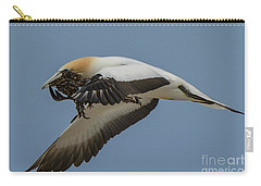 Carry-all Pouch featuring the photograph Gannets 1 by Werner Padarin