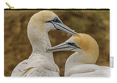 Gannets 4 Carry-all Pouch by Werner Padarin