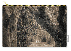 Carry-all Pouch featuring the photograph Gateway Through An Avenue Of Live Oaks by Chris Bordeleau