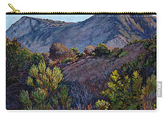 Gaviota Afternoon Carry-all Pouch