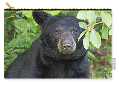 Gazing Black Bear Carry-all Pouch