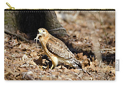 Carry-all Pouch featuring the photograph Gecko For Lunch by George Randy Bass