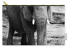 Carry-all Pouch featuring the photograph Gentle One by Karol Livote