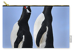 Gentoo Love Song Carry-all Pouch