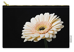 Carry-all Pouch featuring the photograph Gerbera Daisy On Black II by Clare Bambers