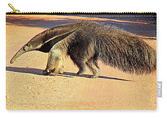 Giant Anteater Crosses The Transpantaneira Highway In Brazil Carry-all Pouch