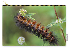 Giant Leopard Moth Caterpillar Carry-all Pouch