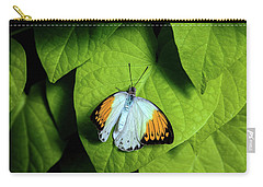 Carry-all Pouch featuring the photograph Giant Orange Tip Butterfly by Tom Mc Nemar