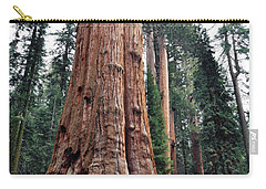 Carry-all Pouch featuring the photograph Giant Sequoia II by Kyle Hanson