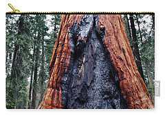 Carry-all Pouch featuring the photograph Giant Sequoia by Kyle Hanson