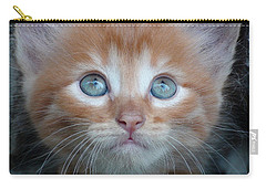 Ginger Kitten With Blue Eyes Carry-all Pouch by Sergey Lukashin