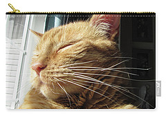 Ginger Tabby Carry-all Pouch