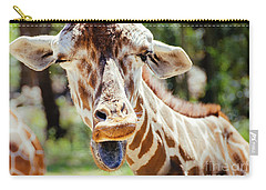 Carry-all Pouch featuring the photograph Giraffe by Andrea Anderegg