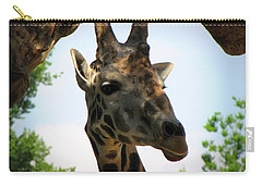 Giraffe Carry-all Pouch by Beth Vincent