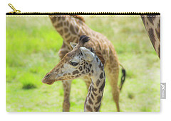 Carry-all Pouch featuring the photograph Giraffe Posing by Shannon Harrington