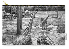 Carry-all Pouch featuring the photograph Giraffe Reticulated by Howard Salmon