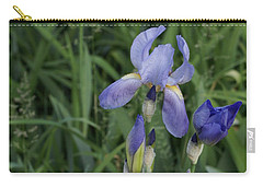 Glads Carry-all Pouch by Cynthia Powell