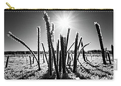 Glare Of The Spring Sun Carry-all Pouch