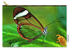 Carry-all Pouch featuring the photograph Glasswinged Butterfly by Ralph A Ledergerber