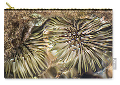 Carry-all Pouch featuring the photograph Glistening by Colleen Coccia