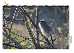 Gnatcatcher Carry-all Pouch