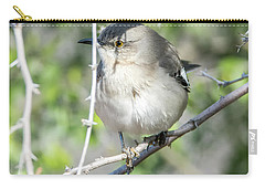 Carry-all Pouch featuring the photograph Northern Mockingbird by Tam Ryan