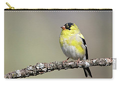 Gold Finch Carry-all Pouch