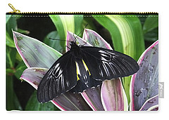Golden Birdwing Carry-all Pouch by Judy Wanamaker