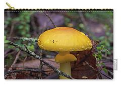 Golden Cap Carry-all Pouch