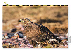Golden Eagle's Back Carry-all Pouch by Torbjorn Swenelius