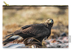 Golden Eagle's Glance Carry-all Pouch by Torbjorn Swenelius