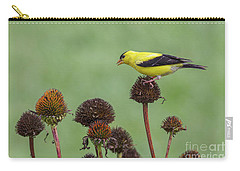 Goldfinch And Coneflowers Carry-all Pouch
