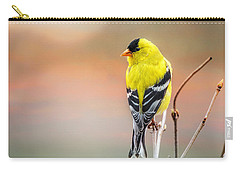 Goldfinch At Sunrise Carry-all Pouch