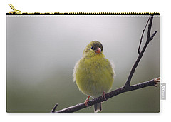 Carry-all Pouch featuring the photograph Goldfinch Puffball by Susan Capuano