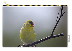 Carry-all Pouch featuring the photograph Goldfinch Song by Susan Capuano