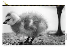 Goose Chick Carry-all Pouch