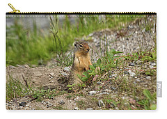 Gopher In Close Up Carry-all Pouch by Patricia Hofmeester