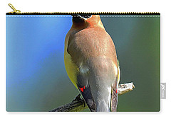 Carry-all Pouch featuring the photograph Gorgeous Cedar Waxwing by Rodney Campbell