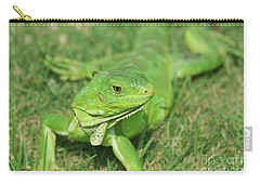 Gorgeous Green Iguana Stretched Out Carry-all Pouch by DejaVu Designs