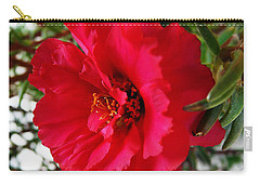 Carry-all Pouch featuring the photograph Gorgeous by Jasna Dragun