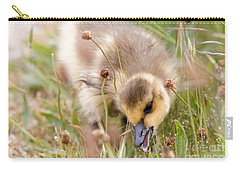 Gosling Nibble Carry-all Pouch