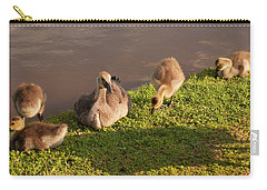 Carry-all Pouch featuring the photograph Goslings Basking In The Sunset by Chris Flees