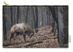 Carry-all Pouch featuring the photograph Got A Scratch by Andrea Silies