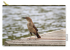 Grackle On A Dock Carry-all Pouch