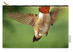 Grand Display Carry-all Pouch by Bill Pevlor