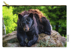 Grandfather Mountain Black Bear Carry-all Pouch