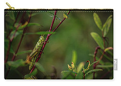 Grasshopper Holding On Carry-all Pouch by Ray Congrove