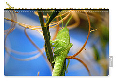 Grassy Hopper Carry-all Pouch by Chris Brannen