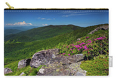 Grassy Ridge Bald Carry-all Pouch