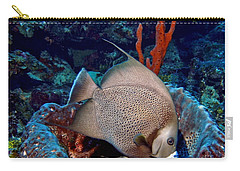 Carry-all Pouch featuring the photograph Gray Angel Fish And Sponge by Amy McDaniel